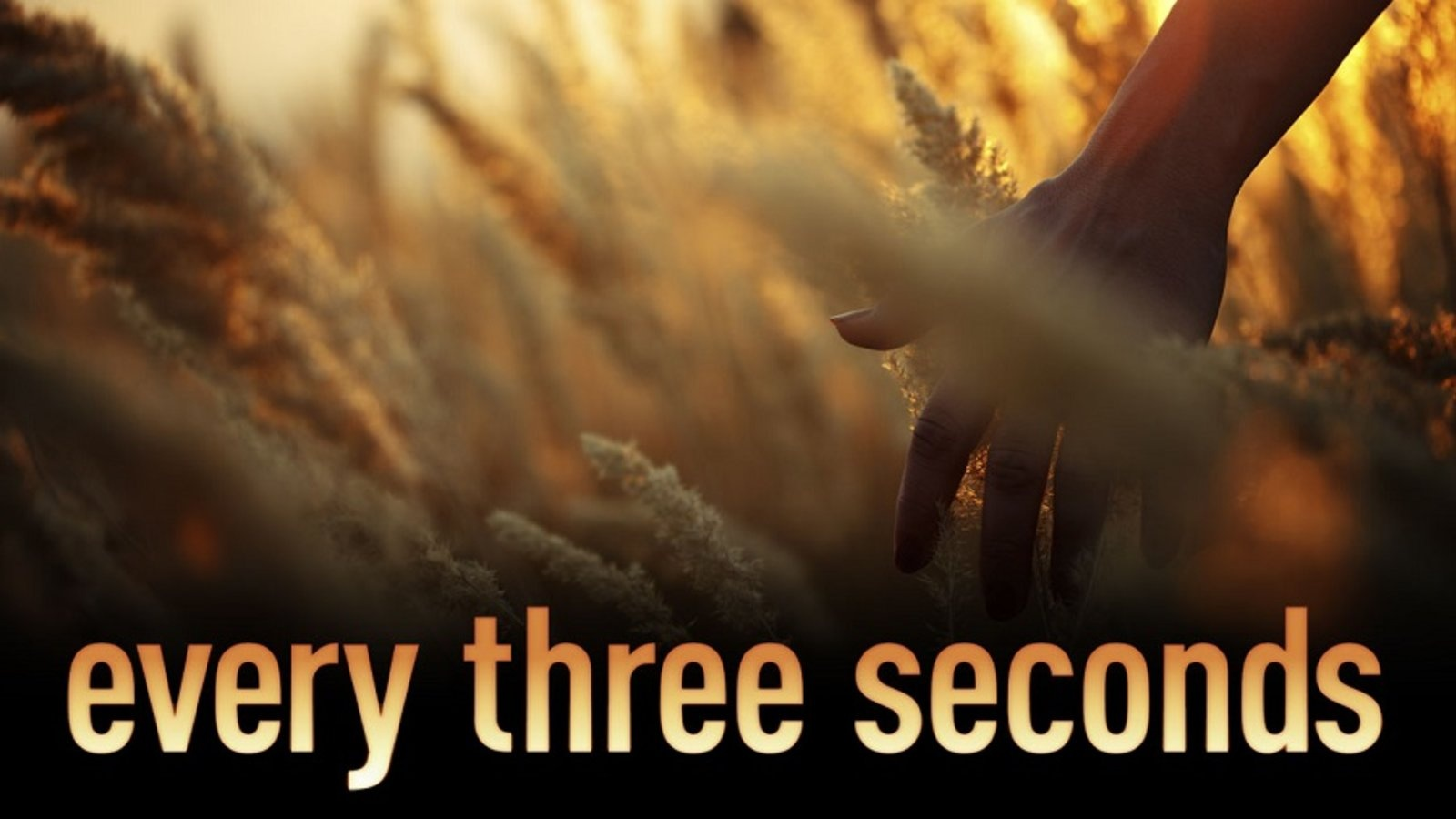 Every Three Seconds (available on demand)